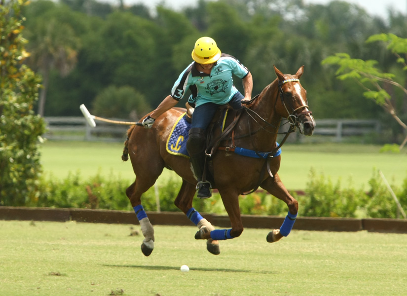longfield eastern challenge polo tournament polo mag pacheco photos polo mag