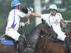 Perfect Polo Partners